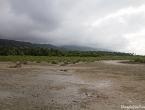 Paysage de début de mangrove