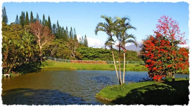 Le Parc Zoologique et Forestier