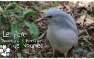 Vidéo - Le Parc Zoologique et Forestier